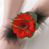 Red Germini & Feather Wrist Corsage