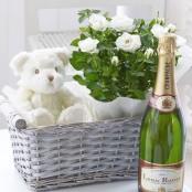 Celebratory Baby Gift Basket