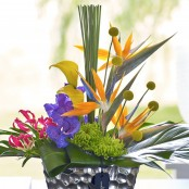 Luxury Tropical Arrangement